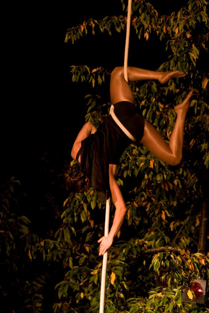 """Cabaret cirque """"le plateau ivre"""""""