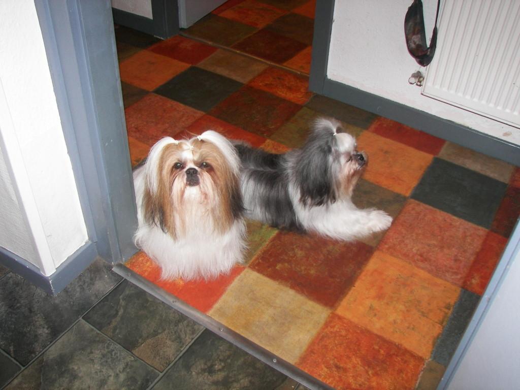 Bergamote et Lily