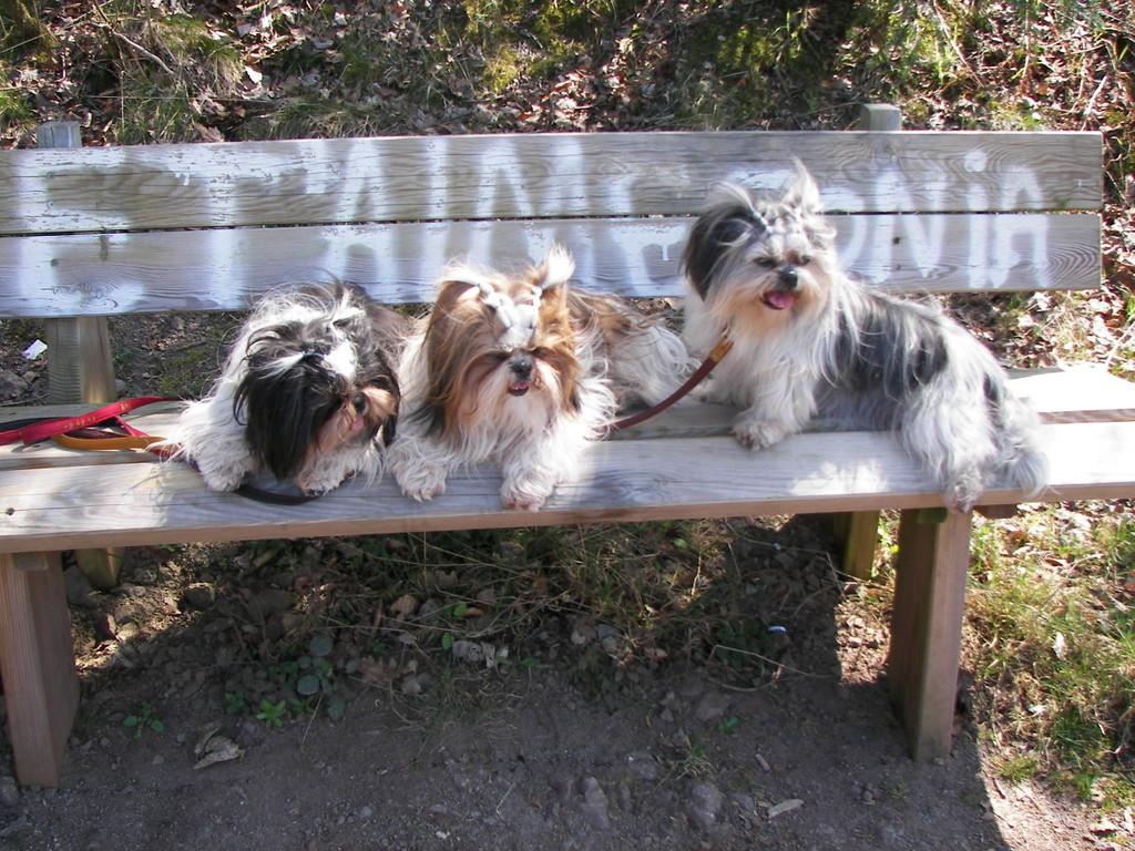 Nous trois repos