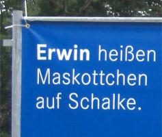 Wahlkampagne Landtag