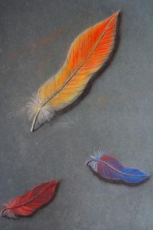 """""""3 bunte Federn"""", Pastellstifte auf Papier, 31,5x48 cm"""