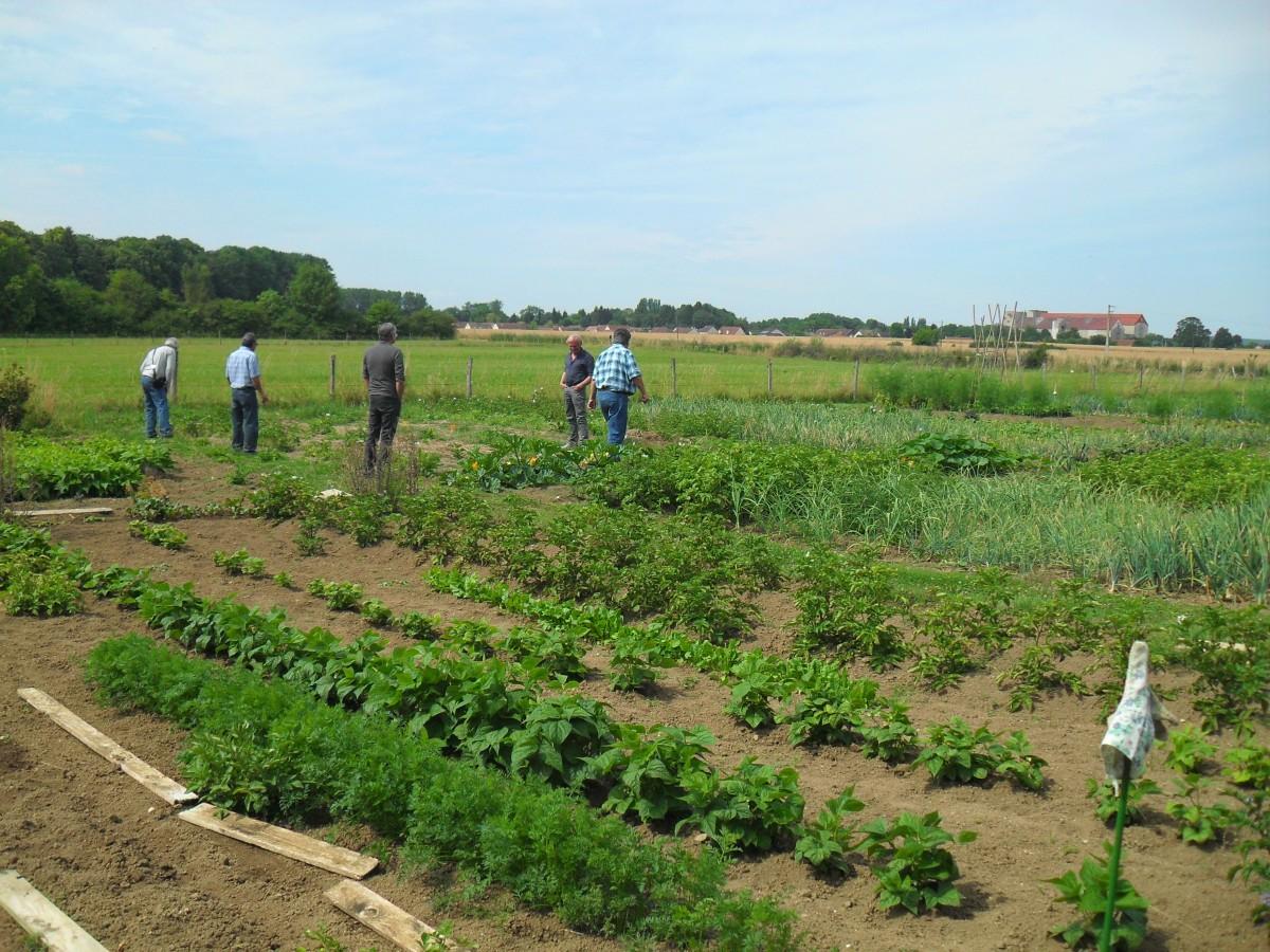 Les responsables de Jardinot National visitent nos jardins