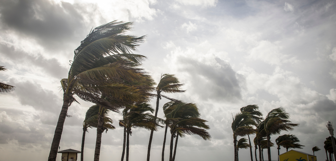 Yard & Pool Preparation Tips During Tropical Storm or Hurricanes