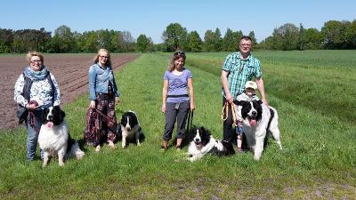 von links nach rechts, Hummel, Bandit ( Bragi ), Badia und Bryce..Balerea kam später noch dazu