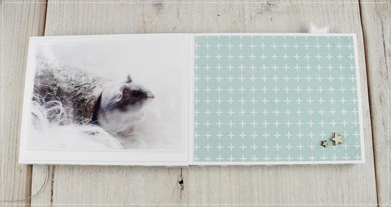 Scrapbook Minialbum Hamster, Fotografie, Album