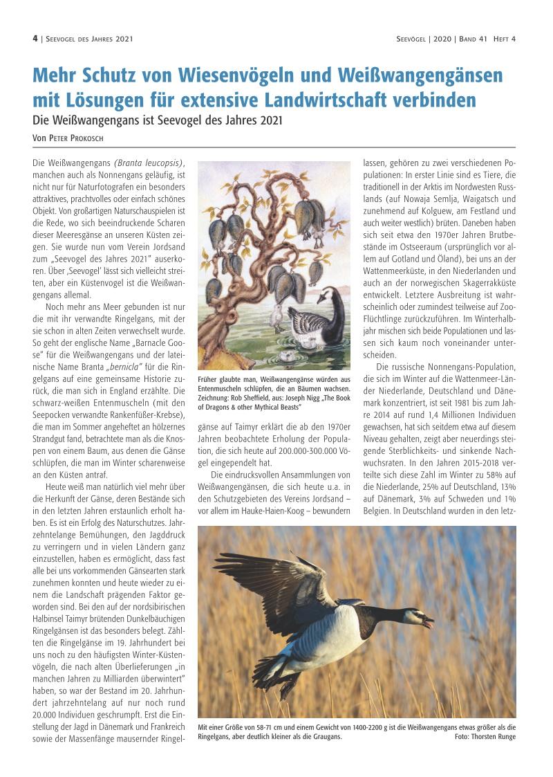 Mehr Schutz von Wiesenvögeln und Weißwangengänsen mit Lösungen für extensive Landwirtschaft verbinden