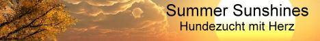 Summer Sunshines - Hundezucht mit Herz