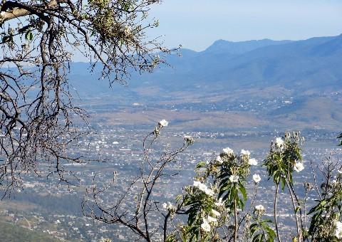 Oaxaca vue de Monte Alban