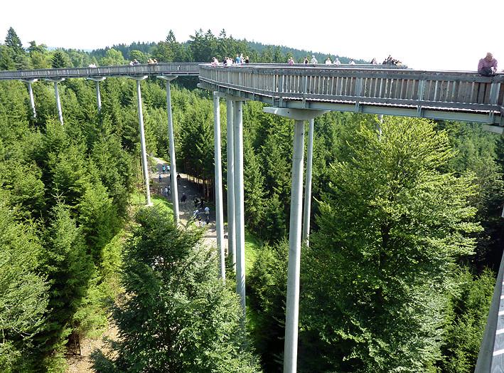 Waldwipfelweg St. Englmar