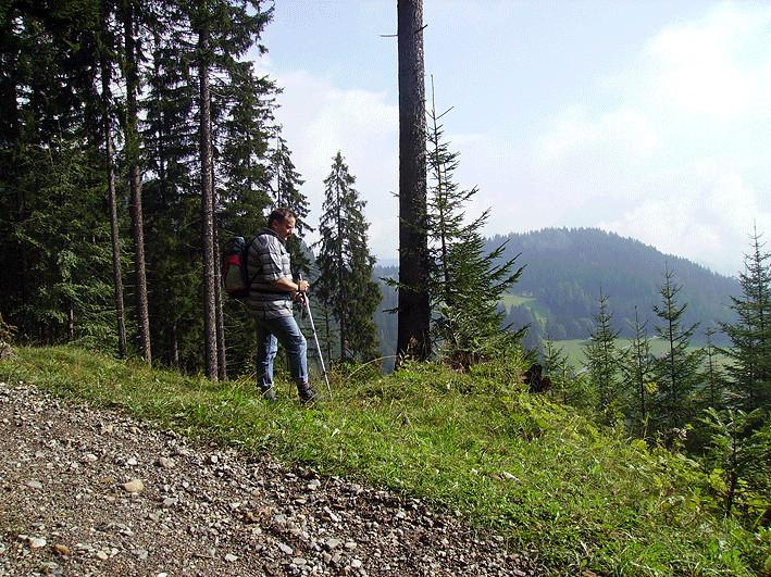Wanderung Stangenberg