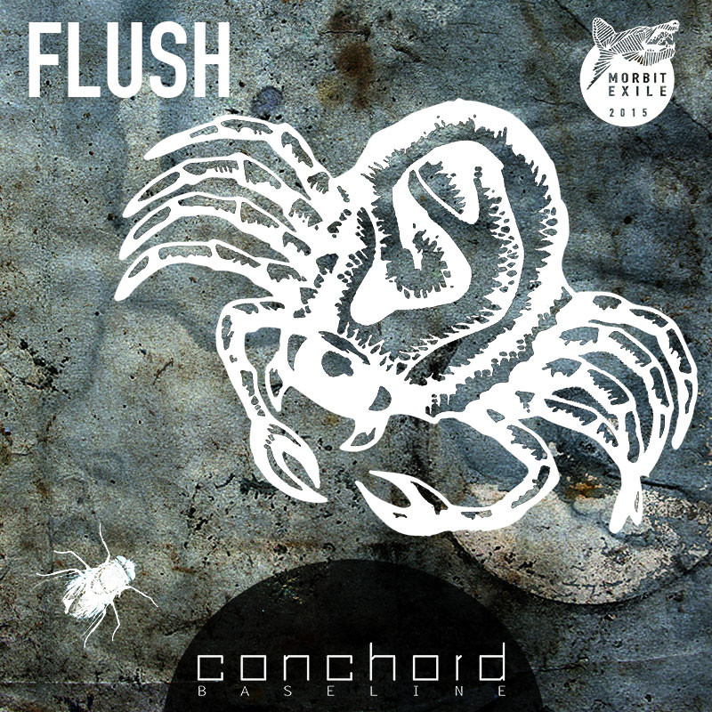 cover artwork illustration || flush | conchord baseline | 2015 vienna