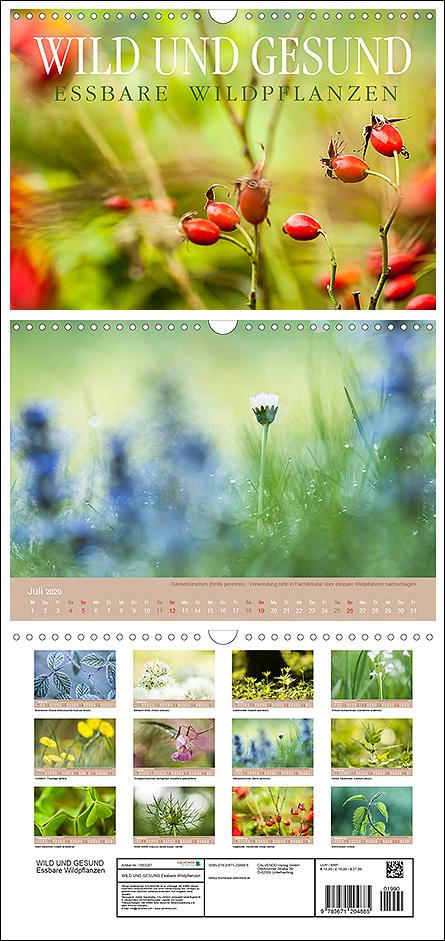 """Kalender """"Wild und Gesund - essbare Wildpflanzen"""""""