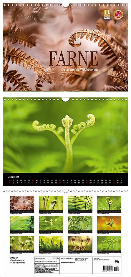 """Kalender """"Farne - faszinierende Waldbewohner"""""""