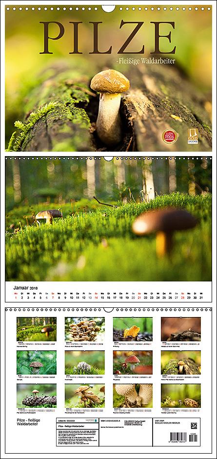 "Kalender ""Pilze - fleißige Waldarbeiter"""