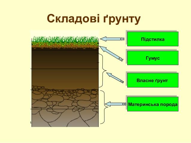 Географія Хімічний склад грунту його значення Грунти  Хімічний склад грунту реферат