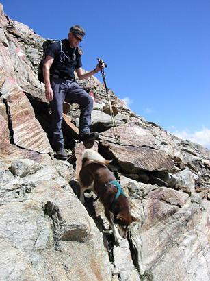 Abstieg vom Sulzkogel (3.012 m)