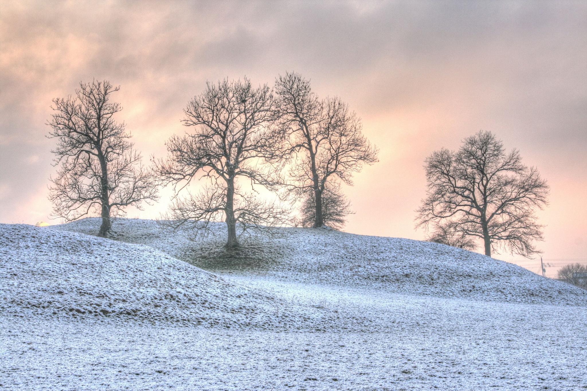 Hausener Feld im Winter