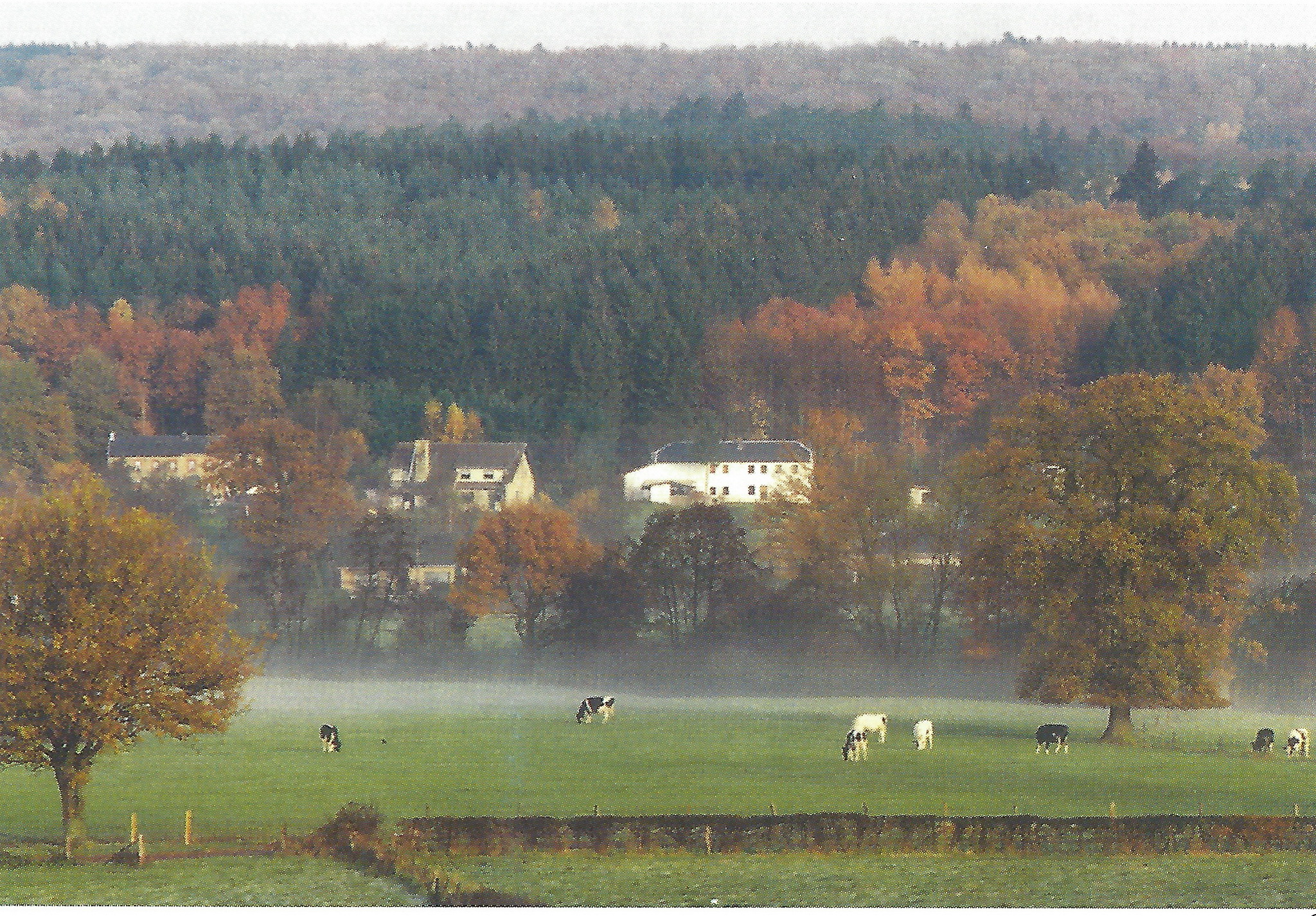 Flög 1993