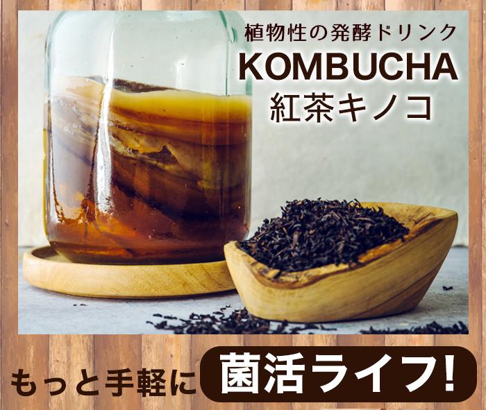 ■海外セレブに話題のKOMBUCHAご存知ですか? What`s KOMBUCHA? コンブチャってなに? 海外セレブが注目する菌活ドリンク 海外セレブを中心に、モデルやタレントなどにとても人気のある発酵飲料。 砂糖を入れた紅茶に「紅茶キノコ」と呼ばれる菌を入れて作ります。 菌には酵母菌や酢酸菌が含まれているため今話題の「菌活」ドリンクとして 世界から注目されています。 そんなコンブチャをもっと飲みやすく!もっと手軽に!したのがコチラ!! KOMBUCHA HERBAL BLEND TEA コンブチャブレ