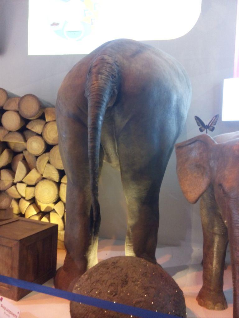 Elefantendung; future energy auf der Expo in Astana, Kasachstan