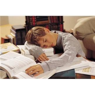 勉強に疲れてうたた寝をするうちの王子(いや、それは盛り・・・ヾ(・∀・;)オイオイ)