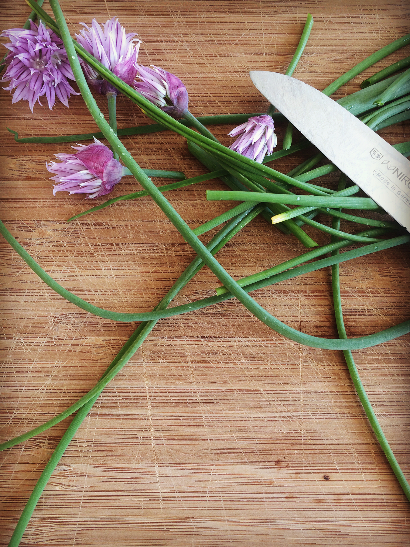 Chives & it's blossoms - mycleanlife