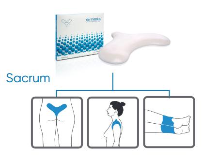 Dermisplus® Prevent für Sakrum oder Knöchel