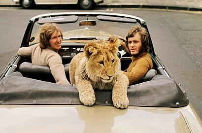 """ A LION CALLED CHRISTIAN"" (JOHN RENDALL, GEORGE ADAMSON)"
