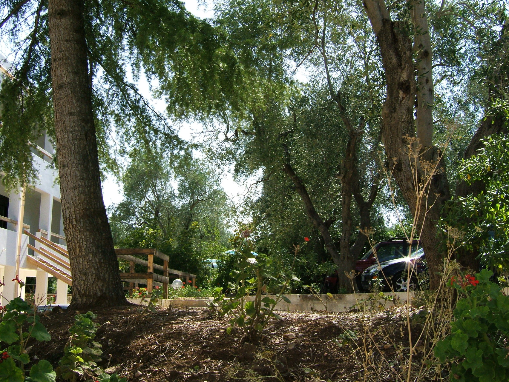 Villaggio Gallo a Vieste: esterni