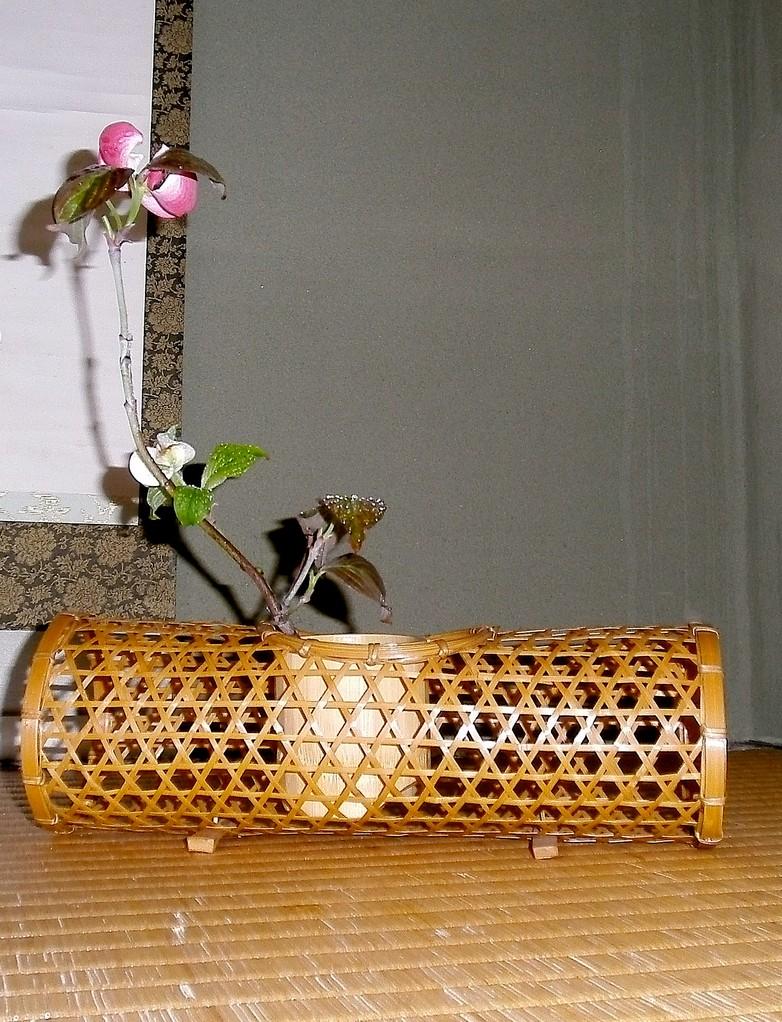 アメリカ花水木 六つ目籠