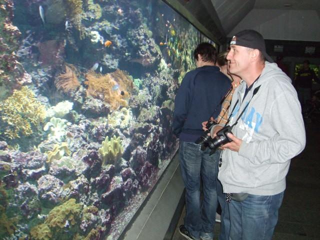 Norbi staunt über tolle Aquarium