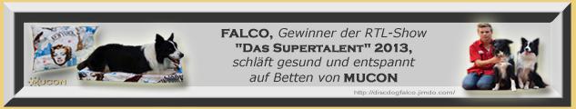 Falco RTL Supertalent 2013 Gewinner schläft auf Mucon Betten (Lukas Pratschker)