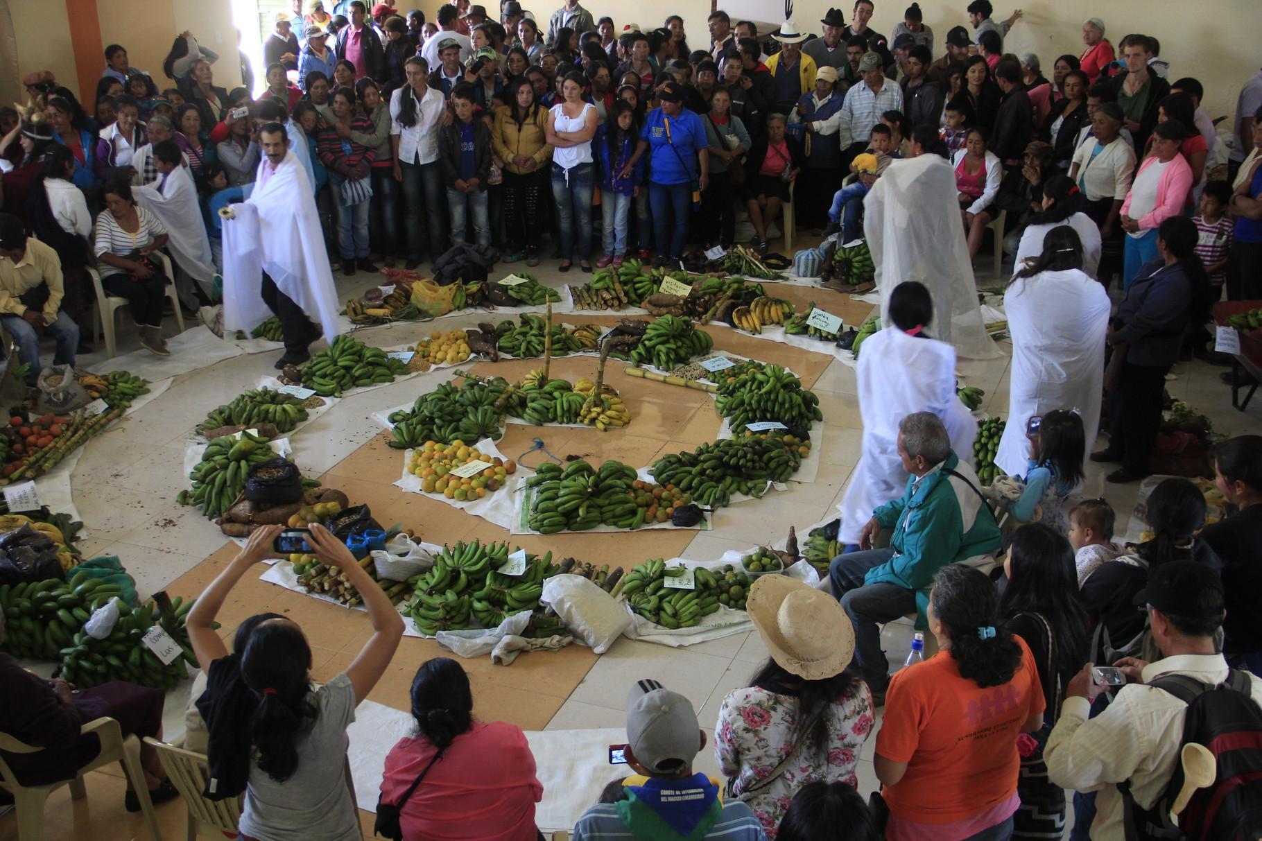 X Encuentro de Guardianes de Semillas en Resguardo Guachavez. Santacruz-Nariño. 2015