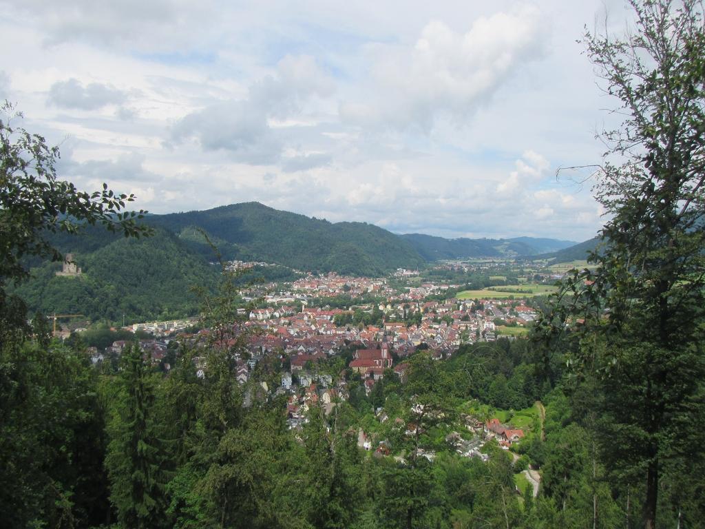 Blick über Waldkirch