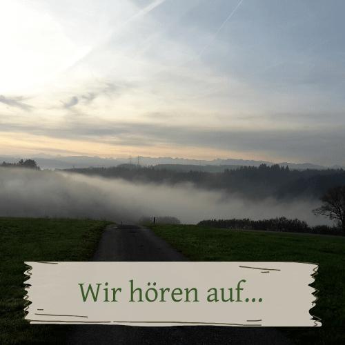 Weg in und aus dem Nebel