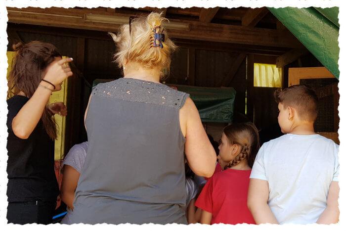 Kinder und Erwachsene auf Tuchfühlung mit den Ziegen beim Stallrundgang