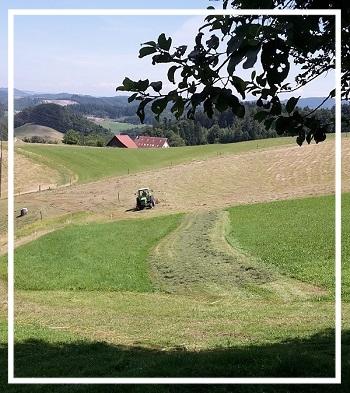oekoheumahd_traktor_deutz