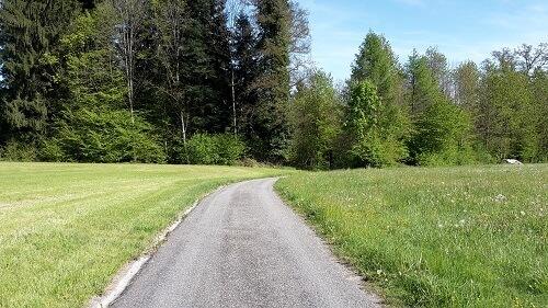 Blick zurück zum Könighof - Rückblick