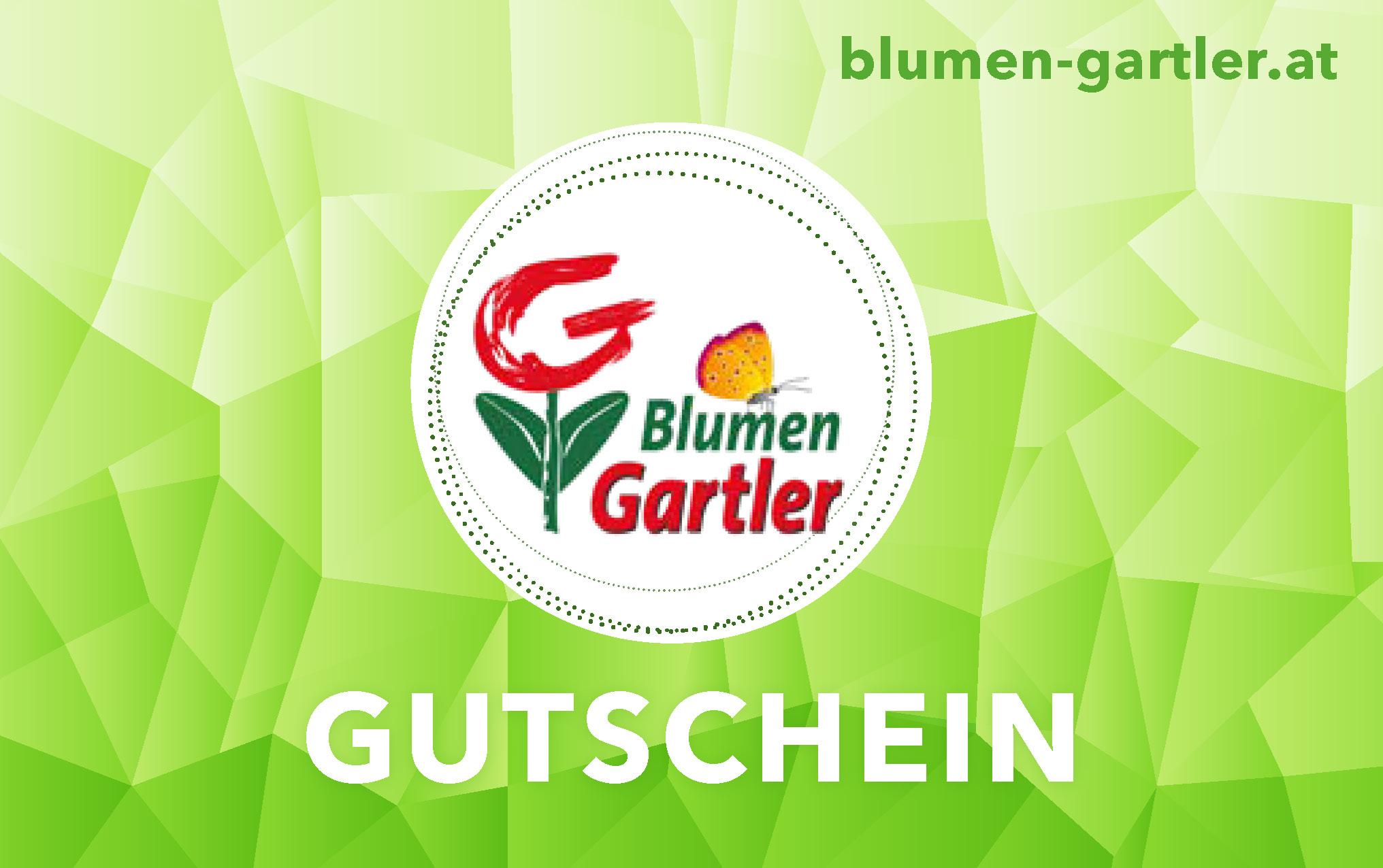 service blumen gartler zwingendorf. Black Bedroom Furniture Sets. Home Design Ideas
