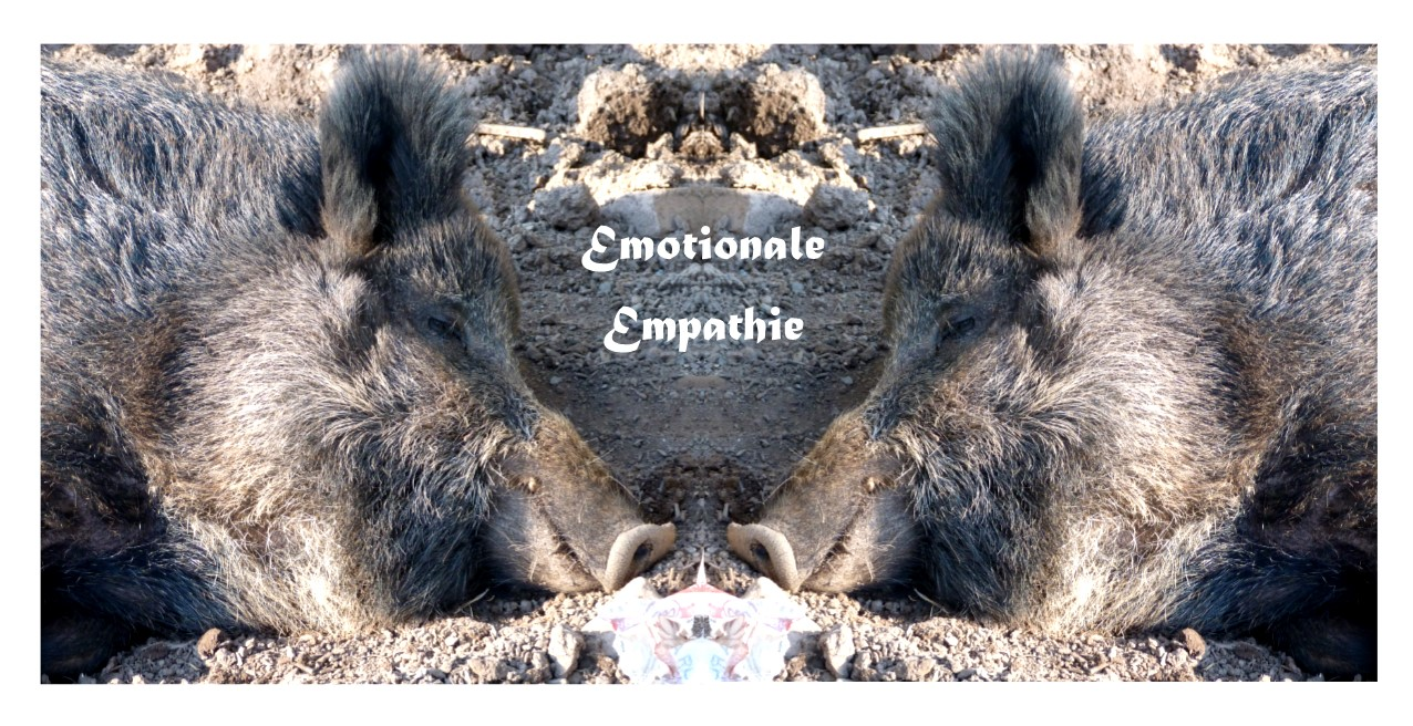 Emotionale Empathie