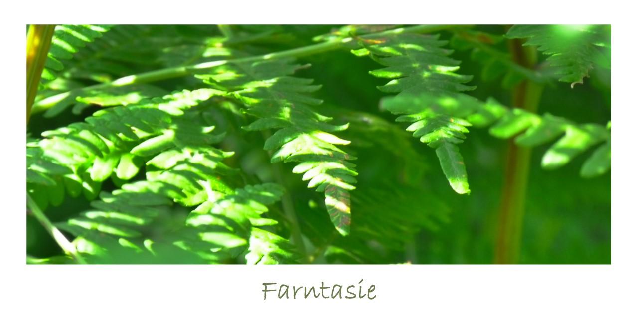 Farntasie