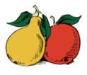 Obstbrand aus Äpfeln und Birnen, Hof Ganal