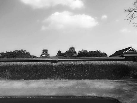 二の丸公園から見た重要文化財・宇土櫓と熊本城