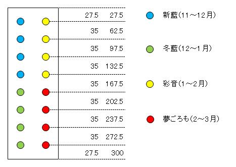 キャベツ配置図(レイアウト)