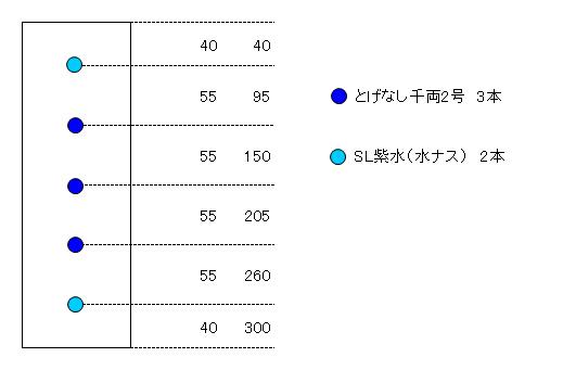 ナス配置図(レイアウト)