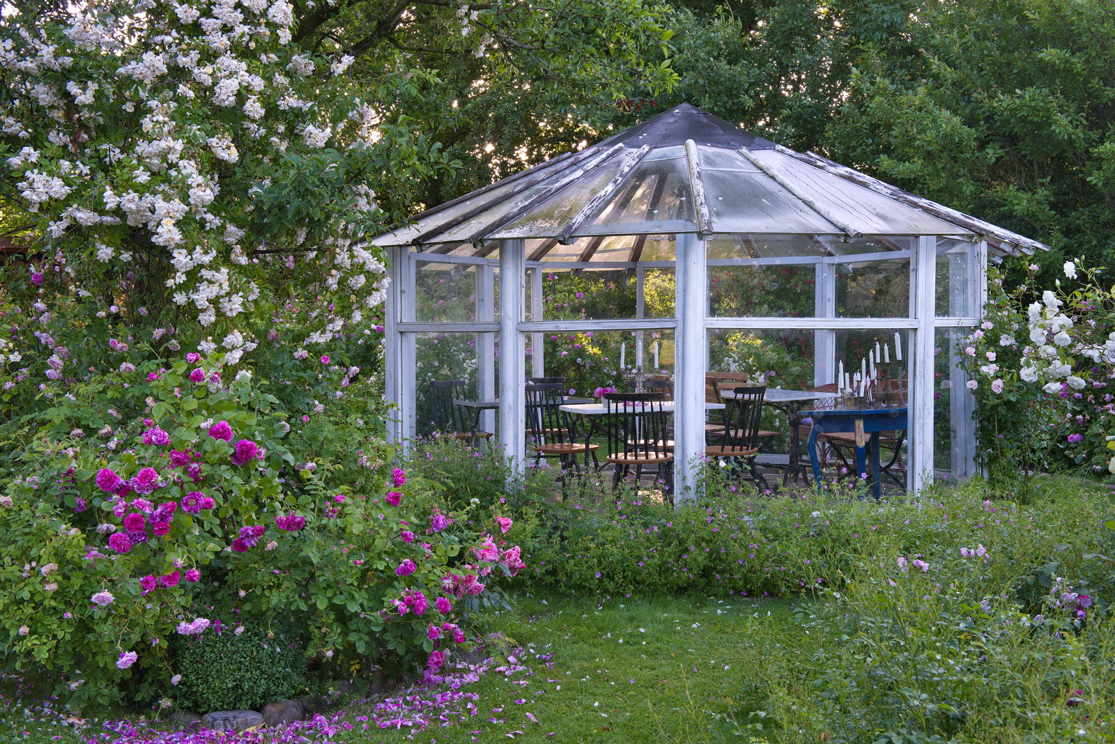 Ehemals unser Gewächshaus, jetzt Gartenhaus mit Rundumblick zu allen Seiten.