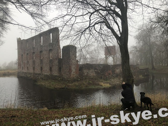 """Trøjborg Slotsruin, Visby/Syddanmark in December...inspired by E.A. Poe and H.P. Lovecraft - next to Walt Whitman, maybe the two biggest writers in US-History (55° 1′ 17″ N, 8° 45′ 14.5″ E )."""