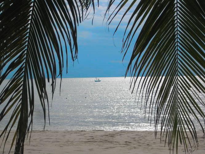 Batam - Das Verwelken eines einstigen Insel-Paradieses...