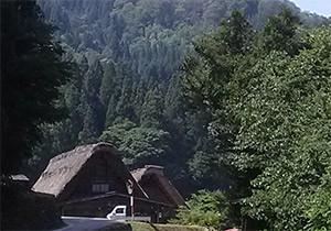 森に囲まれた岐阜県(写真は白川郷)