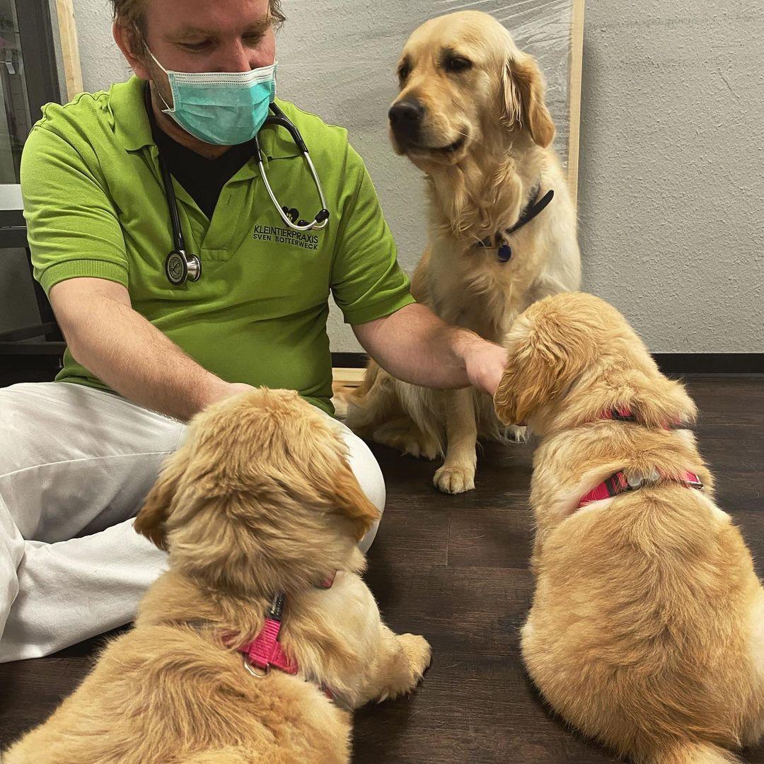 Das erste mal die Tierarztpraxis kennen lernen